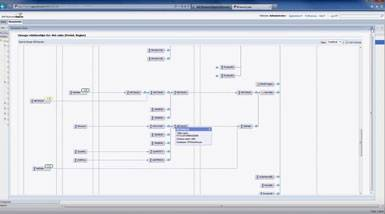screen sap im information steward w385